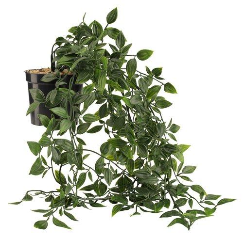 Planta artificial OLIVER p/colgar c/mace