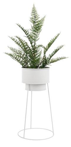 Artificial plant TOM D13xH55cm w/pot