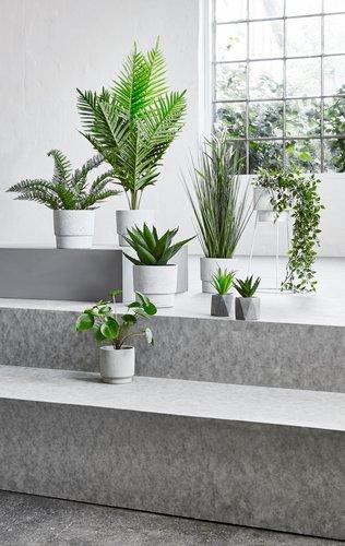 Kunstig plante STEINAR Ø25xH32cm m/potte