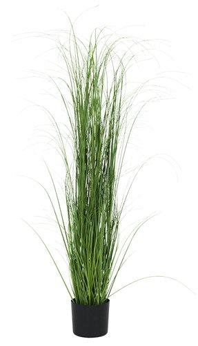 Sztuczna trawa MARKUSFLUE W150cm