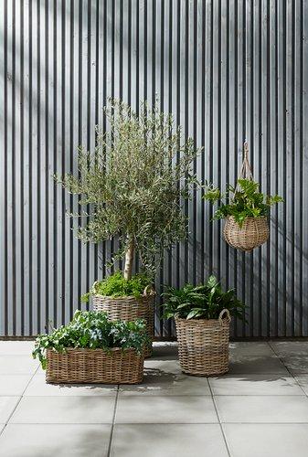 Jardinieră grădină SANSEBIE 40/50 2buc/s