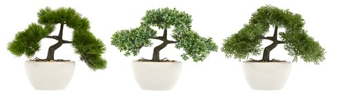 Planta artificial BONSAI A26cm var.