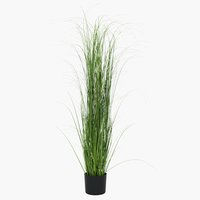 Artificial grass MARKUSFLUE H150cm