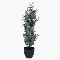 Τεχνητό φυτό RIPA Υ90cm ευκάλυπτος