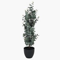 Kunstplant RIPA H90 cm eucalyptus