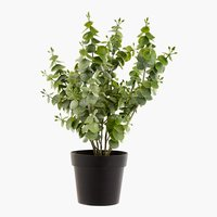 Kunstpflanze KLAUSEN H27cm div.