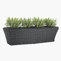 Balcony flower box KORP W20xL60xH19 bl.